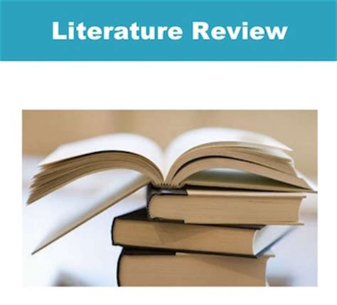 Literature Review Writing Service Pro-Paperscom
